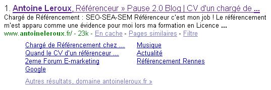 Sitelinks du blog Antoine Leroux Référenceur
